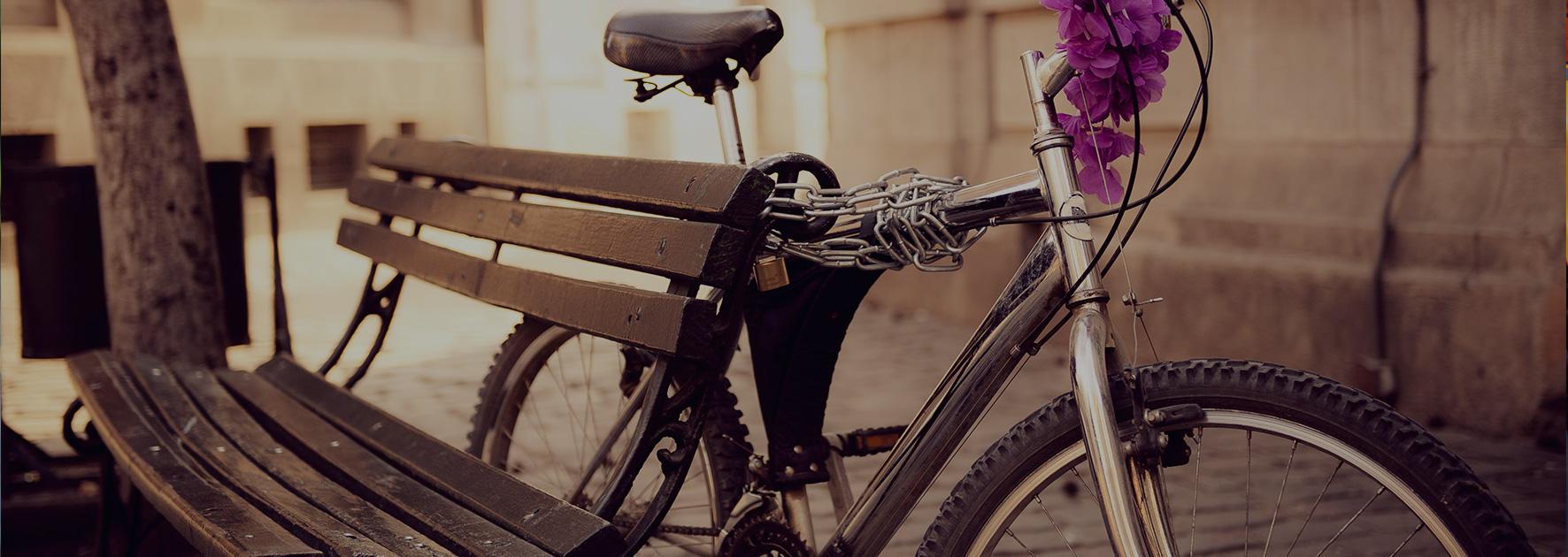In bicicletta fino ad Auschwitz